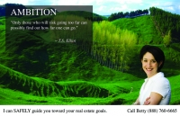 Scenic Wisdom realtor postcard design for direct mail marketing.