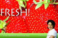 Strawberry design - real estate prospecting postcard design#537. Direct mail marketing for realtors.